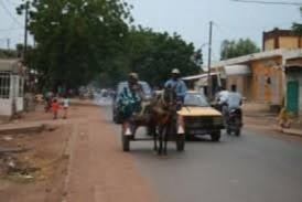 Koundara : la CPA dresse un bilan des dégâts naturels sur les cultures agricoles dans la préfecture