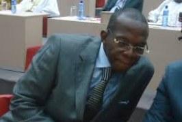 La Guinée prend part à une conférence sur la relance économique post-Ebola qui se tient aux Pays-Bas