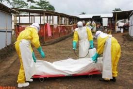 Ebola: 35 nouveaux cas en Guinée et en Sierra Leone, selon l'OMS