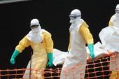 Ebola: 8 nouveaux cas signalés à Forécariah