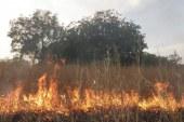 Environnement-Dégradation: Le président de l'ONG SEG interpelle les conservateurs de la nature