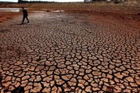 Changement climatique : la Guinée entre dans la danse !