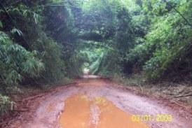 Forêt de Kéréma(N'Zérékoré): Des militaires débarqués à la recherche des rebelles