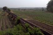 Timbi Madina : bientôt une usine de transformation de pommes de terre